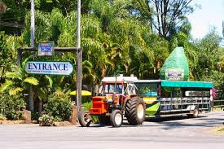 Tropical Fruit World with Wildlife Boat Cruise from Gold Coast, Tweed Heads, AUSTRALIA