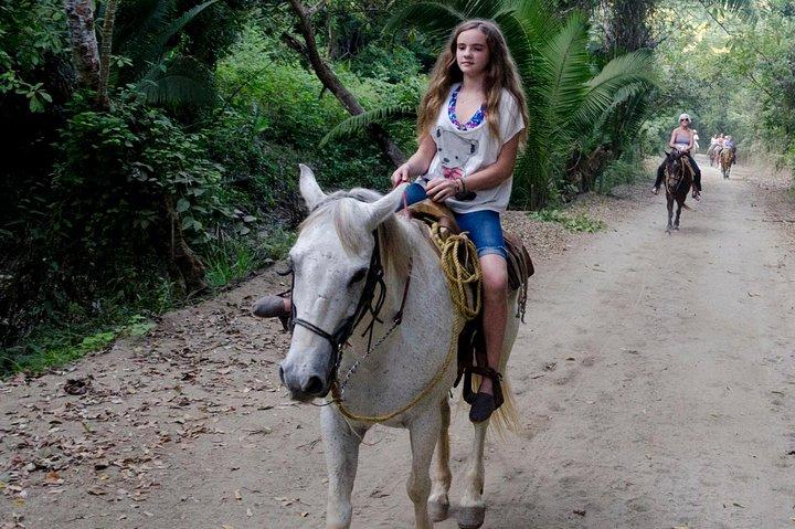 Horseback-Riding Tour from Paraty, Paraty, BRASIL
