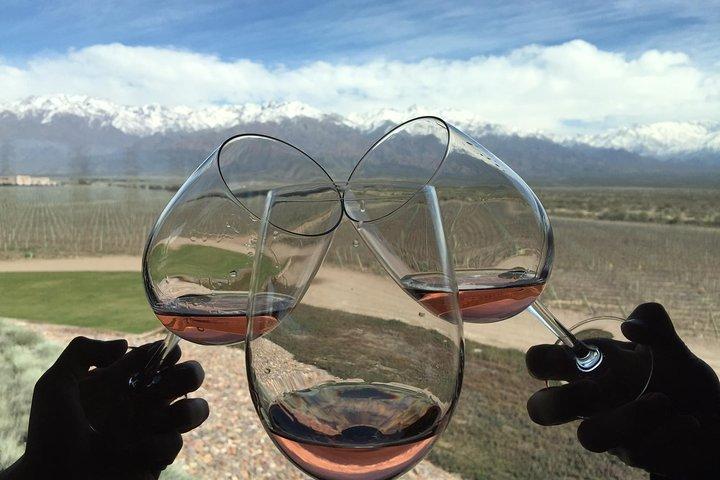 Private Tour: Lujan de Cuyo Wine Region from Mendoza, Mendoza, ARGENTINA