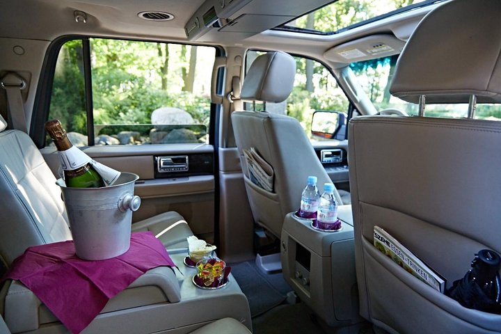 Private Small-Group Hamburg City Tour with a Luxury Vehicle, Hamburg, GERMANY