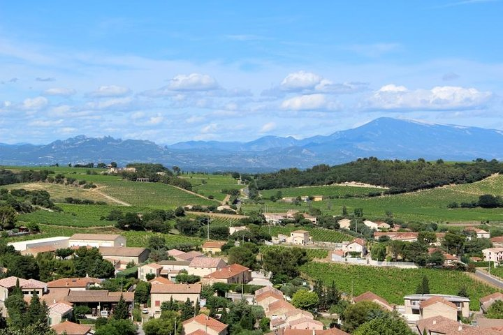 Private Tour: Avignon and Chateauneuf-du-Pape Day Trip from Marseille, Marsella, FRANCIA
