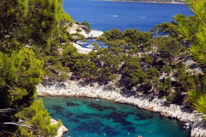 Provence, Marseille and Cassis Sightseeing Tour, Marsella, FRANCIA