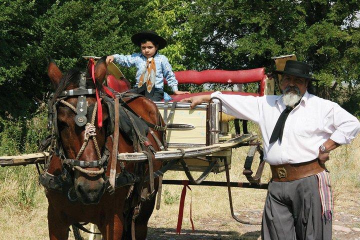 Private Tour: Full-Day Altamira Road Agritourism Experience from Mendoza, Mendoza, ARGENTINA