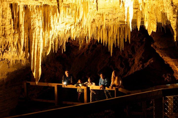 Footwhistle Glowworm Cave, Waitomo, NUEVA ZELANDIA