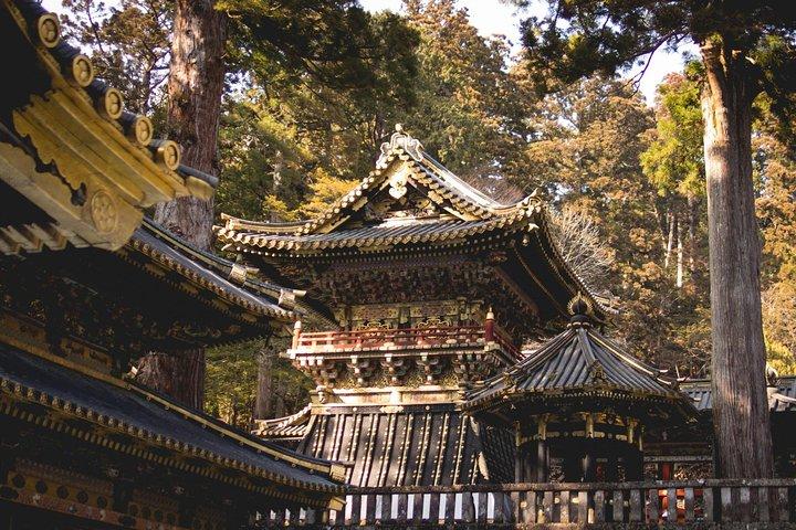 1 Day Private Nikko World Heritage Tour (Charter) - English Speaking Driver, Tokyo, JAPON