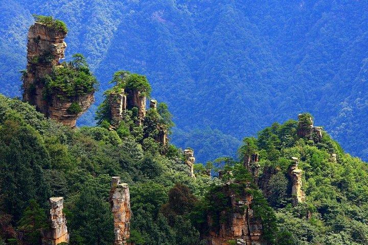 Zhangjiajie National Forest Park Day Tour Including Lunch, Zhangjiajie, CHINA