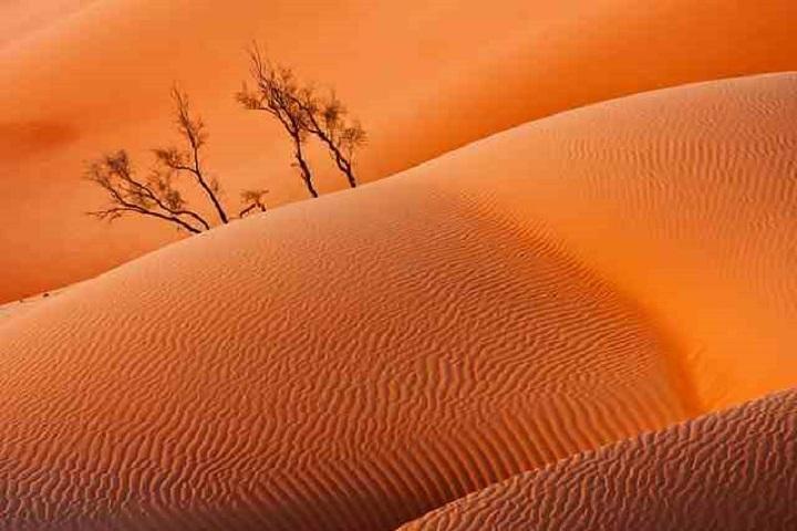 Empty Quarter And Lost City Of Ubar, Salalah, OMAN