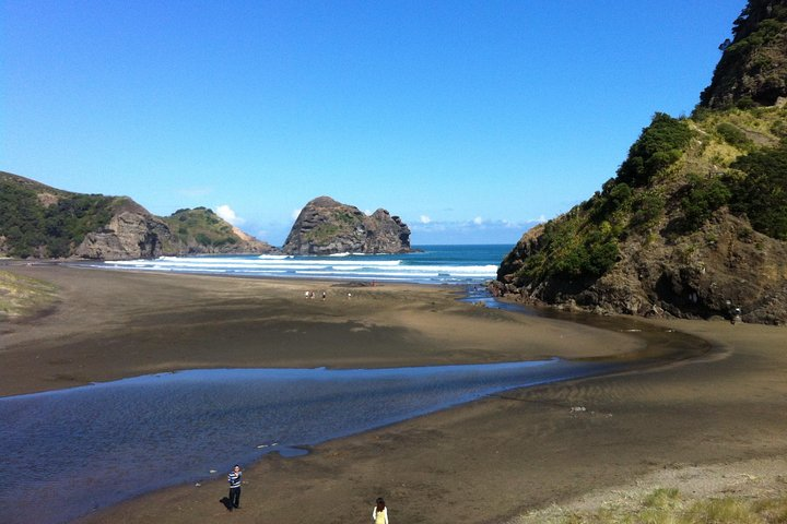 Piha and Karekare Rainforest Wine Tour from Auckland, Auckland, New Zealand