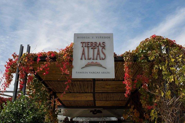 'Bodega Tierras Altas' Malbec Experience, Mendoza, ARGENTINA