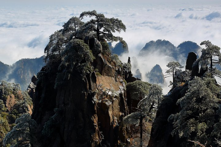 2-Day Private Trip to Huangshan and Hongcun from Shanghai with Accommodation, Shanghai, CHINA