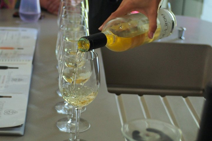 Tour of the regional specialities: wines, oysters, cheeses, olives, biscuits from SETE, Montpellier, FRANCIA