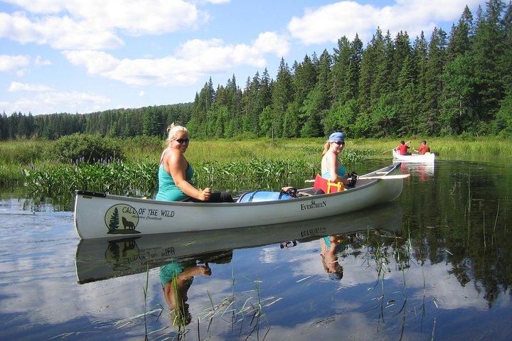 3-Day Algonquin Park Canoe Trip, Ottawa, CANADA