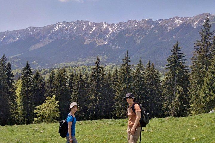 2-Day Transylvania Culture Trek from Brasov - Small Group Tour, Brasov, RUMANIA