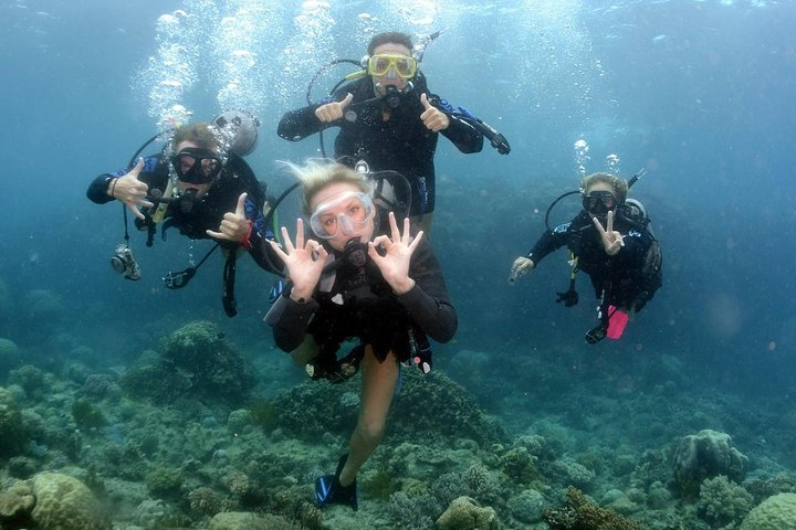 Full Day Diving Tour in the Mediterranean from Side with Lunch, Side, TURQUIA