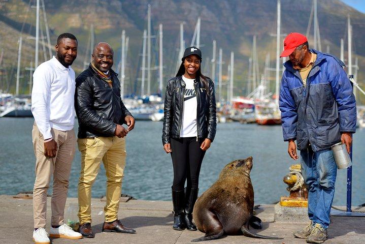 Robben Island Tickets, Penguins & Cape of Good Hope Private Tour, Ciudad del Cabo, SUDAFRICA