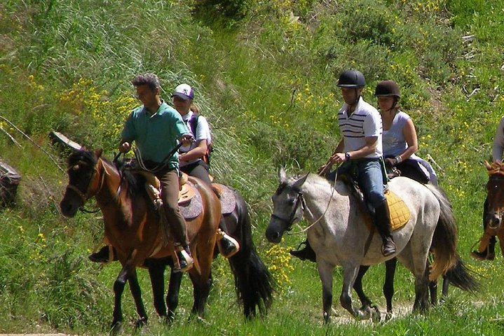 Horse Riding around Titreyengol and Sorgun Pine Forest from Side, Side, TURQUIA