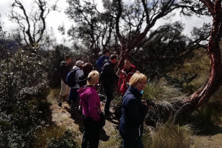 Escapada de un día al Parque Nacional Cajas con almuerzo incluido, Cuenca, ECUADOR