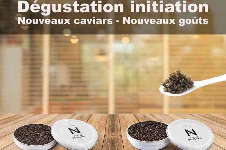 Sturgeon Fish-Farm Visit and Caviar Initiation Tasting in Neuvic, Bergerac, FRANCIA