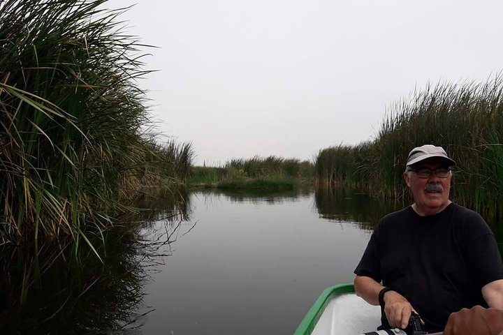 Visite o refúgio de vida selvagem Pantanos de Villa em Lima, Lima, PERU