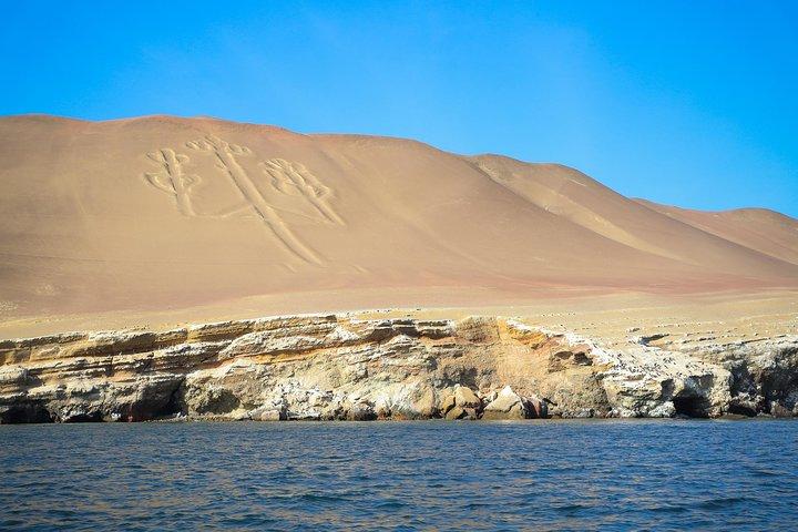 From Lima: Ballestas & Nazca Lines, Lima, PERU