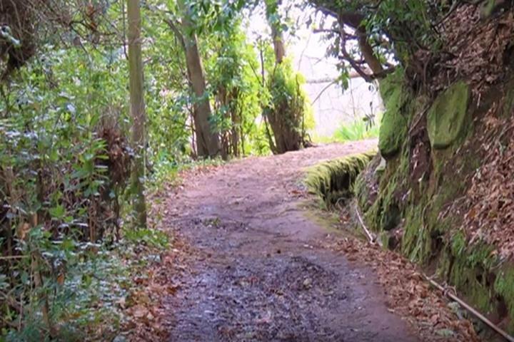 Valley de Paradise Levada Walk, Funchal, PORTUGAL
