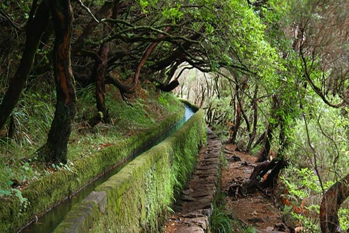 Rabacal - 25 Fountains, Funchal, PORTUGAL