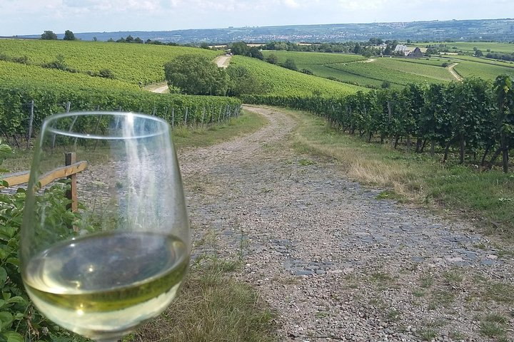 Private Rhine Valley Day Trip from Frankfurt With Wine Tasting, Frankfurt, ALEMANIA