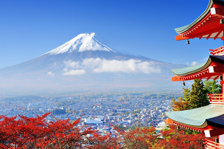 Mount Fuji Day Trip from Tokyo with a Local: Private & Personalized, Tokyo, JAPON