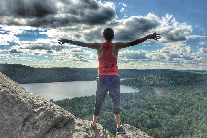 Algonquin Provincial Park Day Tour from Toronto, Toronto, CANADA