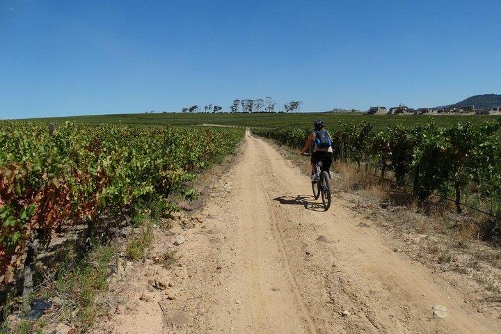 Stellenbosch Winelands Luxury Cycle Tour ©, ,