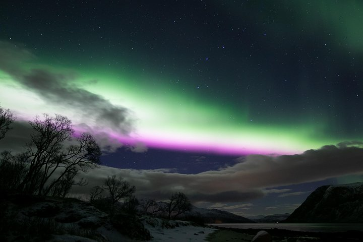 Northern Lights Chase - more than just a chase, Tromso, NORUEGA