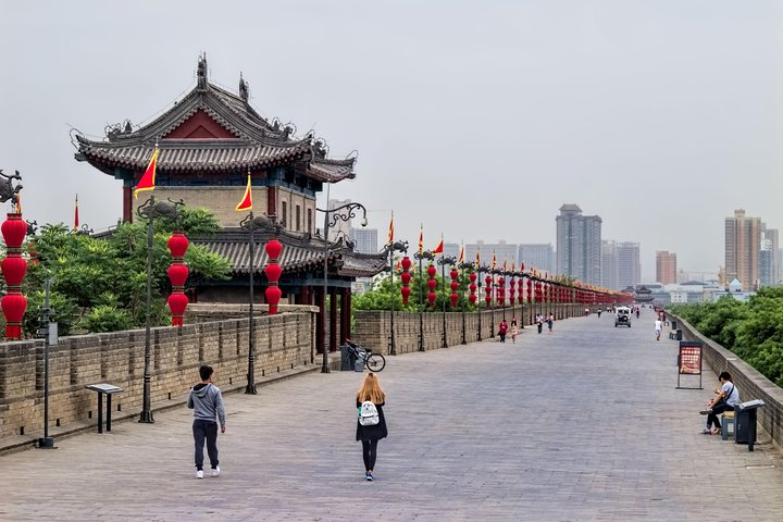 Best Xi'an Private Day Tour with Terracotta Warrior Entry Ticket Option, Sian, CHINA