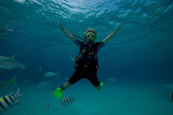 Beginners Scuba Diving Experience in Gran Canaria, Gran Canaria, ESPAÑA
