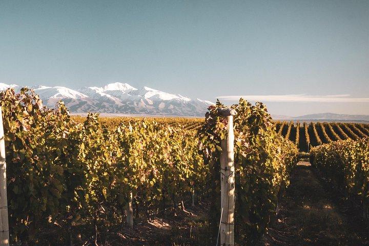 Bodegas ocultas del Valle de Uco, Mendoza, ARGENTINA