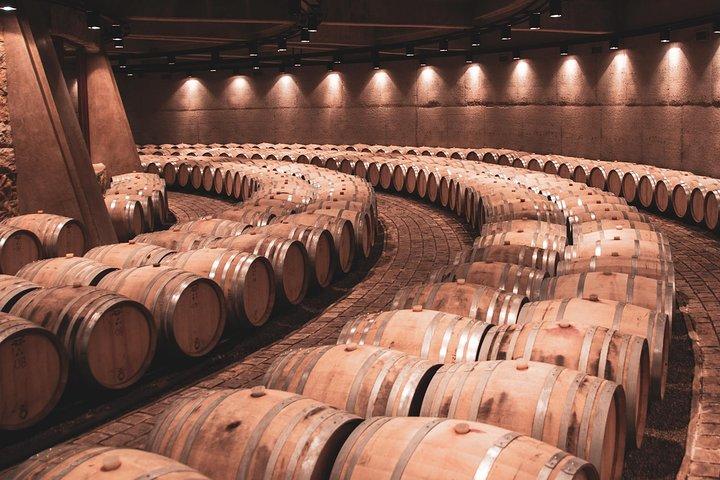 Viva Catena - Argentinian Wine Empire - Gourmet Lunch, Mendoza, ARGENTINA