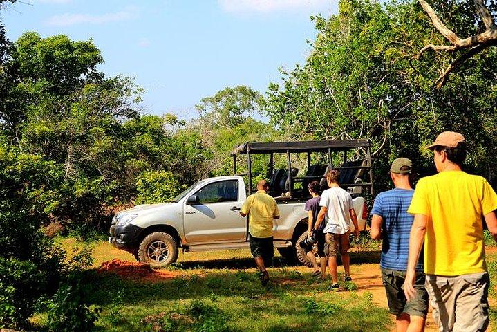 Private Tour: Yala National Park Safari, ,