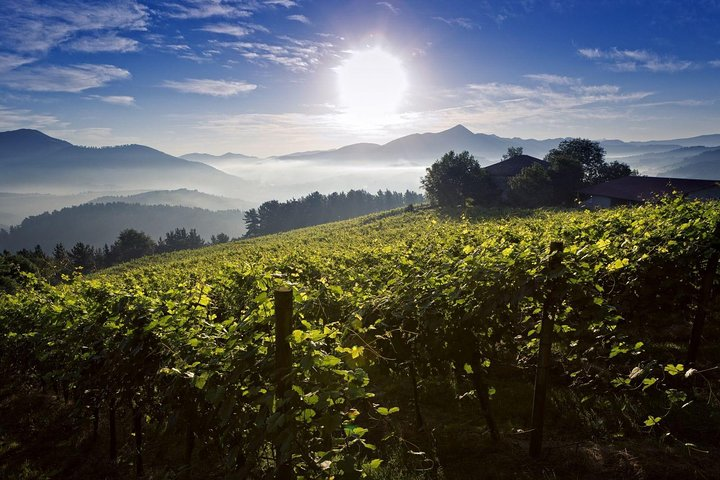 4x4 Basque gastronomy and wine txakoli tour to inland Valley of Ayala, ,