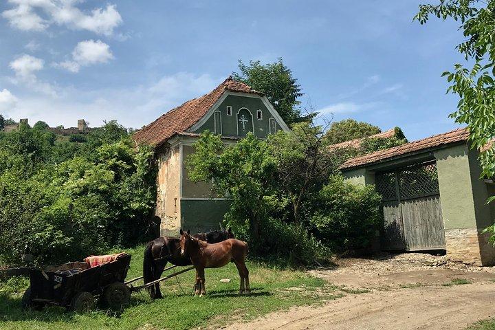 Excursión por los castillos de Bran y Rasnov desde Brasov, Brasov, RUMANIA