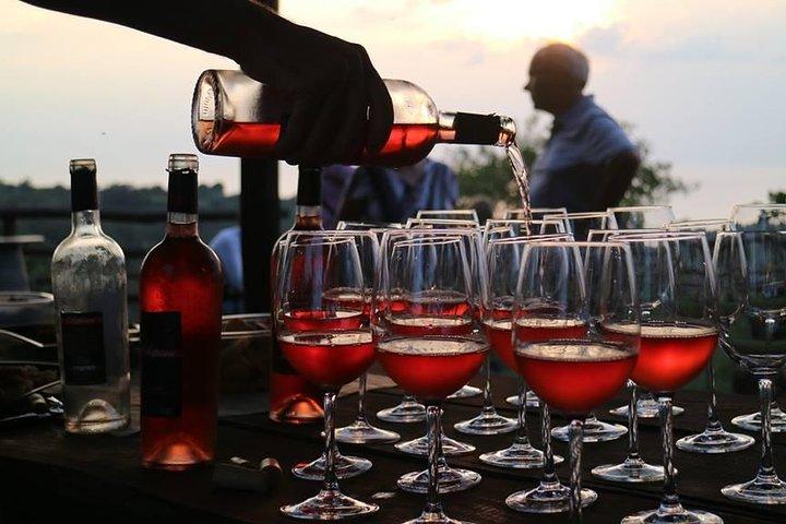Wine and Food Tasting in the vineyard, Tropea, ITALIA