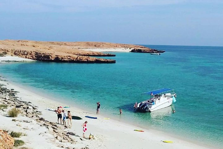 Dolphin Watching & Snorkeling, Mascate, OMAN