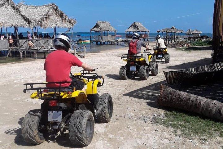 Roatan Monkey and Sloth Hangout plus ATV Adventure, Roatan, Honduras