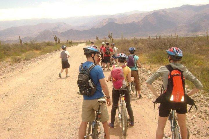 3-Day Tour of Cachi, Laguna Brealito and National Park Los Cardones, Cachi, ARGENTINA