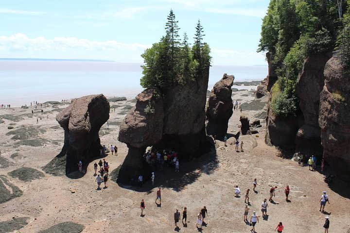 Private Full-Day Tour to Hopewell Rocks from Saint John, Saint Johns, CANADA