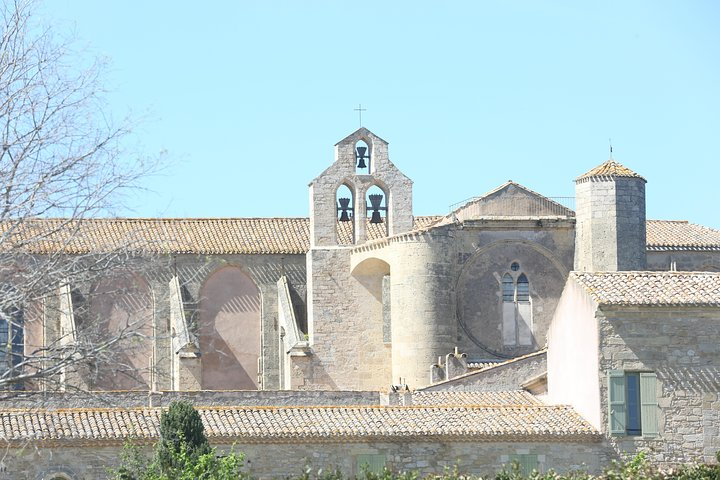 Private day tour to Sète and Bouzigues : culture, food & wine, Montpellier, FRANCIA