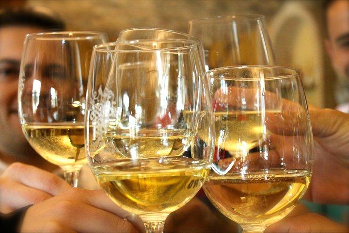 Alicante Wine Tour with Wine Tasting and Hotel Pickup, Alicante, ESPAÑA