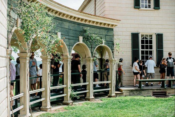 Mount Vernon and Old Town Alexandria Day Trip from Washington DC, Washington DC, ESTADOS UNIDOS