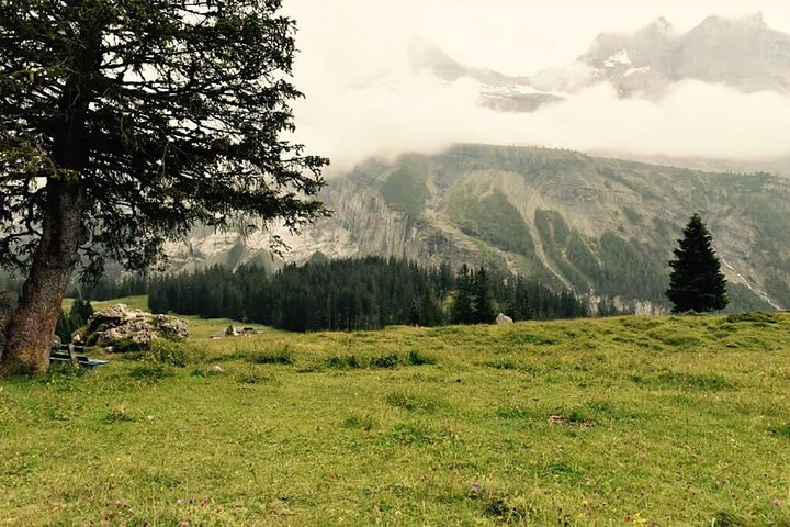 Private trip from Bern to enjoy fishing tour in Oeschinen Lake, Berna, SUIZA