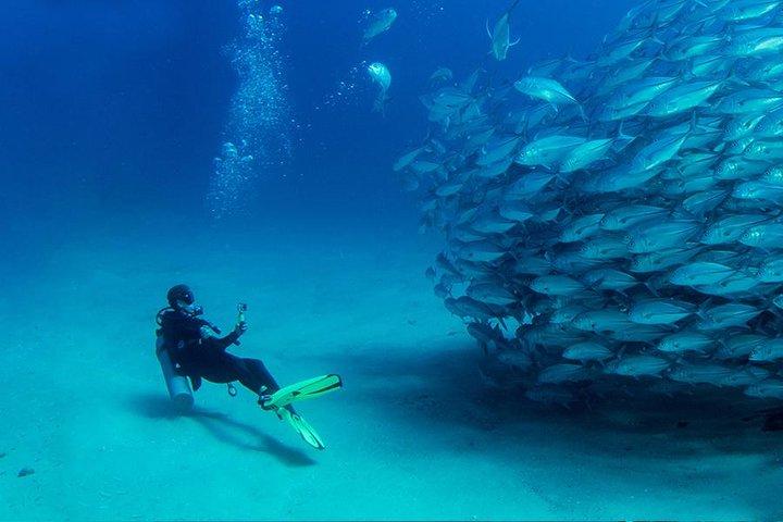 Scuba Diving full of adrenaline in Antalya, Antalya, Turkey