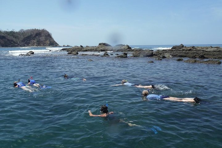 Dolphin and Snorkeling trip with CostaRican Companys, ,