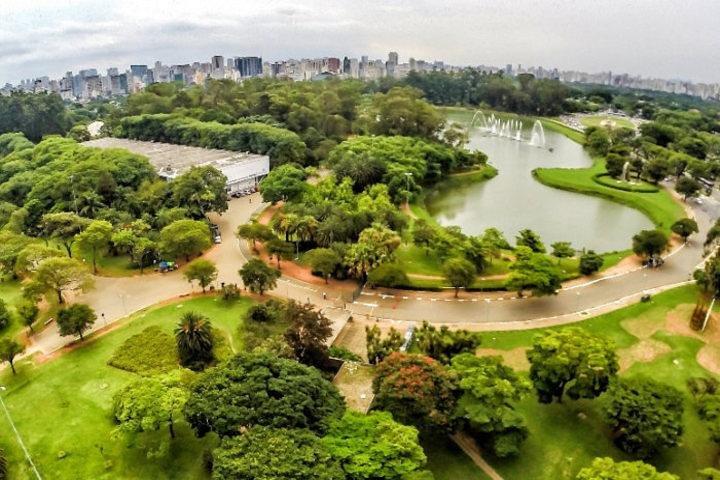 Las Principales Atracciones Turísticas De São Paulo En 8 horas – Tour Privado (Salida De La Ciudad De Santos), Santos, BRASIL